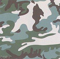 Warhol - 1987 - Camouflage, II.406
