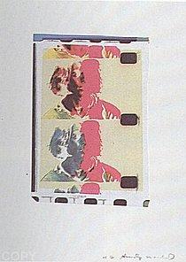 Warhol - 1982 - Eric Emerson (Chelsea Girls), II.287