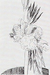 Warhol - 1974 - Flowers, II.100,(Black&White)
