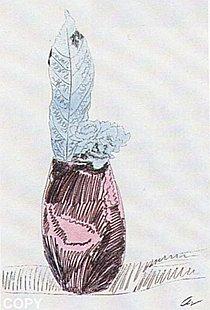 Warhol - 1974 - Flowers, II.115,(HandColored)