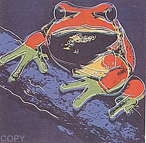 Warhol - 1983 - Pine Barrens Tree Frog, II.294