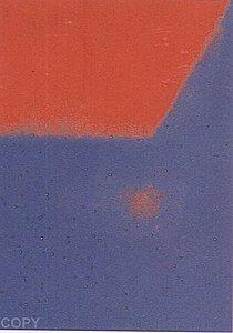 Warhol - 1979 - Shadows I, II.204