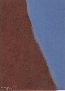 Warhol - 1979 - Shadows II, II.215