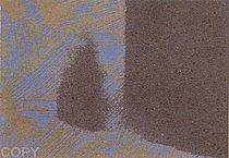 Warhol - 1979 - Shadows III, II.221