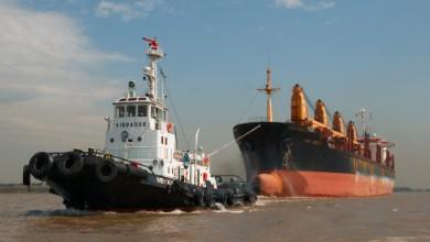 Transportation Company - Maruba - Container Logistics