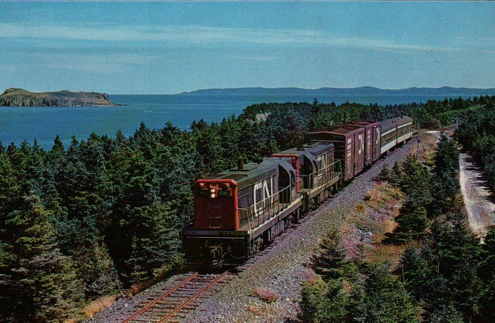 Transportation Company - Terra Transport - Railroad
