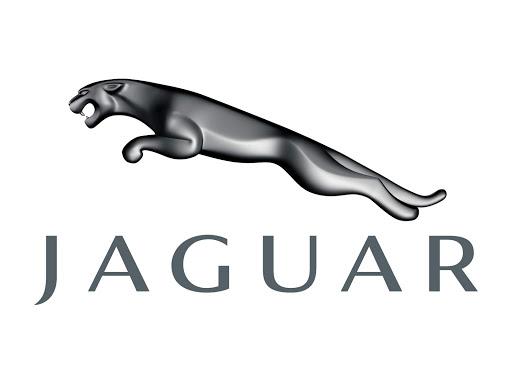 Transportation Company - Jaguar - Automobiles