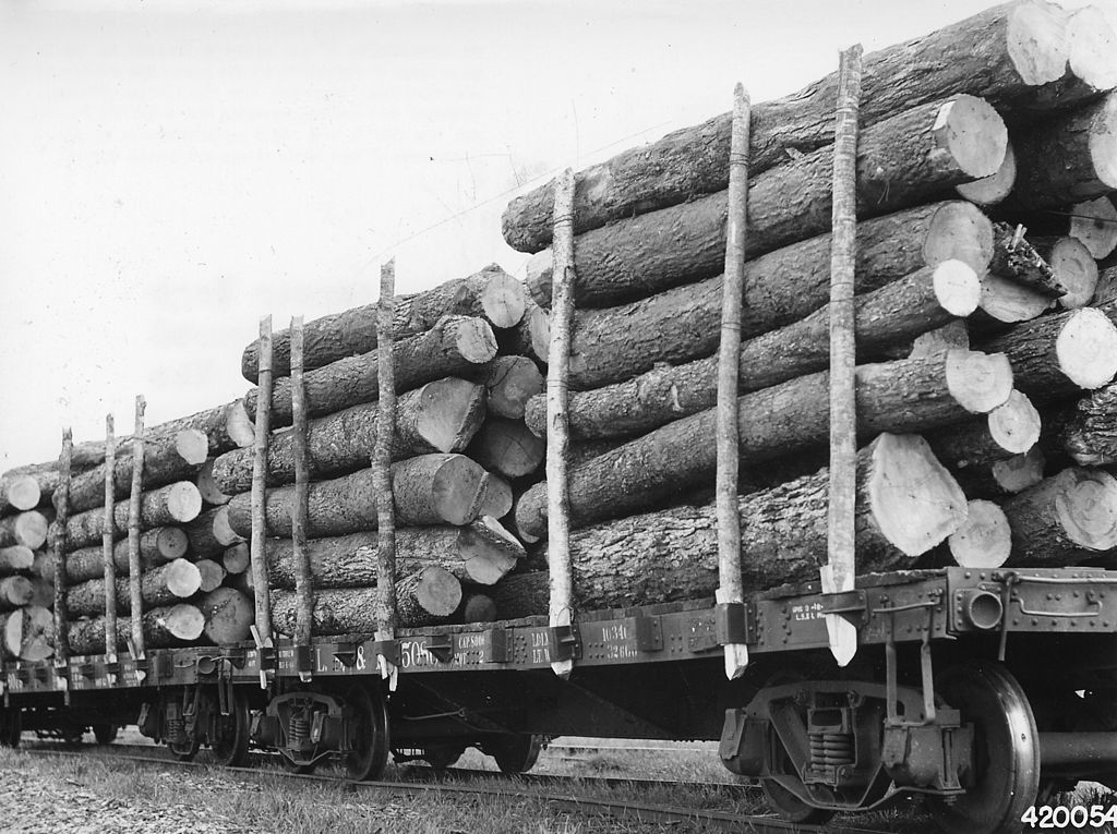 Rail - Rolling Stock (Freight) - Flatcar - Logging