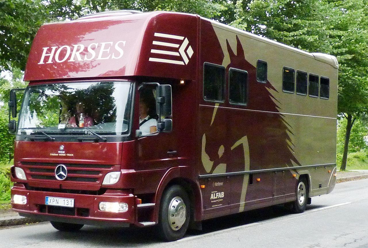 Vehicle - Vehicle - Truck - Trailer, Van - Horsebox